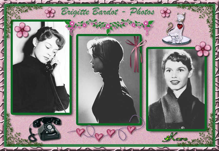 brigitte bardot photos. Black Bedroom Furniture Sets. Home Design Ideas